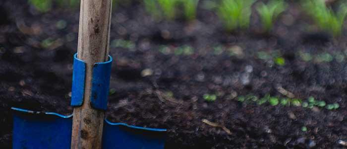 Safe work method statement gardening
